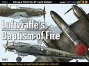 30 - Luftwaffe's Baptism of Fire Part I (decals)
